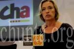 Oliván sigue sin comparecer para explicar su política para las personas sordas. (chunta.org)