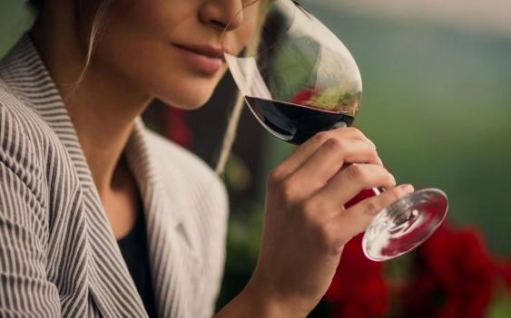 Difunden y fomentan un glosario de vino para personas sordas. (minutoneuquen.com)