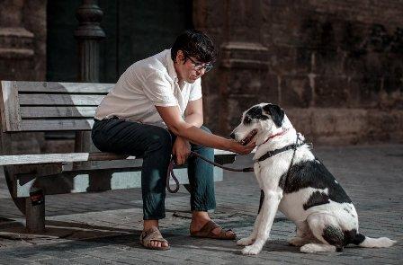 Pilar Lima (Podem): Recomiendo adoptar un perro, los paseos son inspiradores. (efe.com)